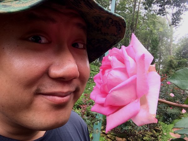 The Suan Suwaree or Rose Garden in Bhubing Palace is particularly famous. Here's me stopping to smell the roses.