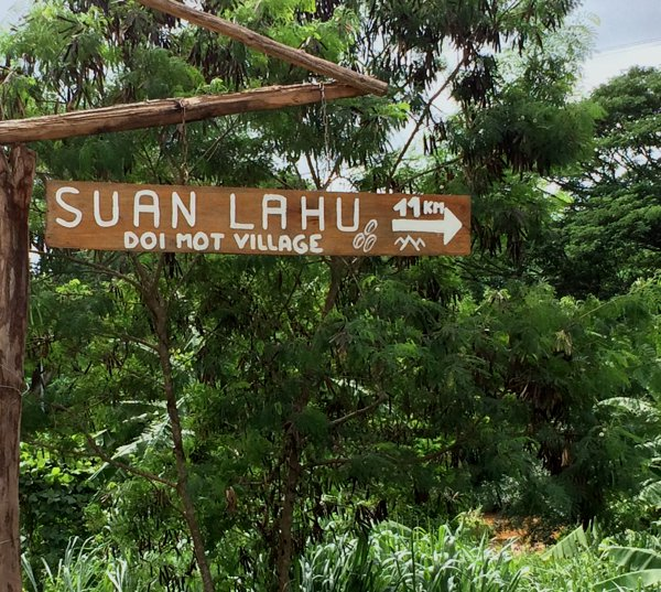 Turn in to Suan Lahu, Doi Mot Village. GPS 19°6′30″ N 99°27′18″ E