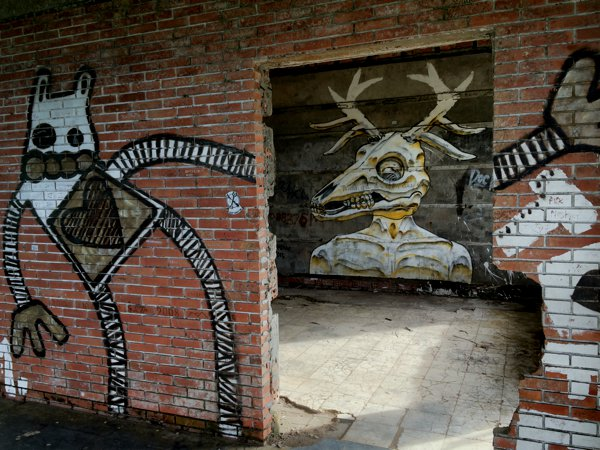 Abandoned buildings + free to roam = perfect canvass for the graffiti artists!